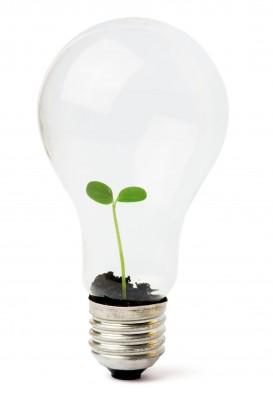 Duurzaamheid door het winstmodel