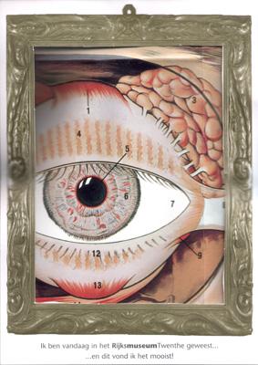 oog met traanklier