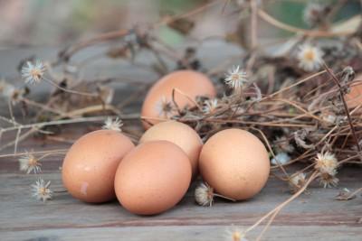 Eieren als voedingsbron voor de ogen