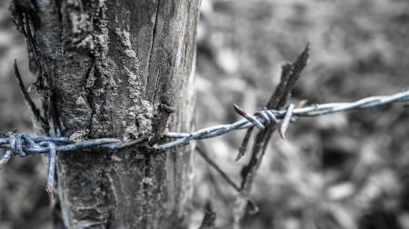 Vrijheid of gevangenis
